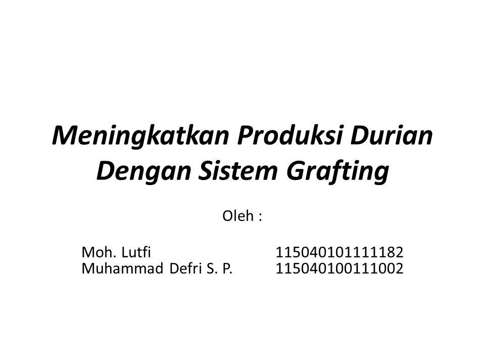 Meningkatkan Produksi Durian Dengan Sistem Grafting Oleh : Moh. Lutfi115040101111182 Muhammad Defri S. P.115040100111002