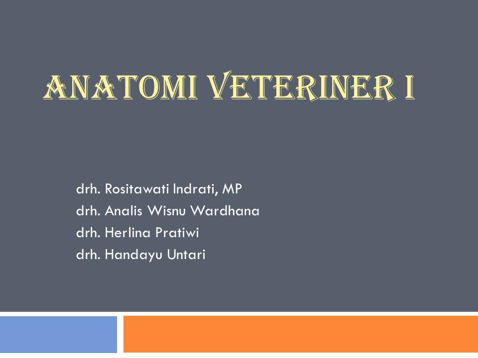 ANATOMI VETERINER I drh. Rositawati Indrati, MP drh. Analis Wisnu Wardhana drh. Herlina Pratiwi drh. Handayu Untari