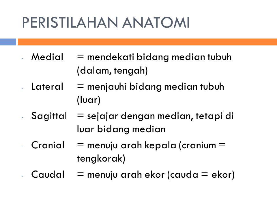 PERISTILAHAN ANATOMI - Medial = mendekati bidang median tubuh (dalam, tengah) - Lateral= menjauhi bidang median tubuh (luar) - Sagittal= sejajar dengan median, tetapi di luar bidang median - Cranial= menuju arah kepala (cranium = tengkorak) - Caudal= menuju arah ekor (cauda = ekor)