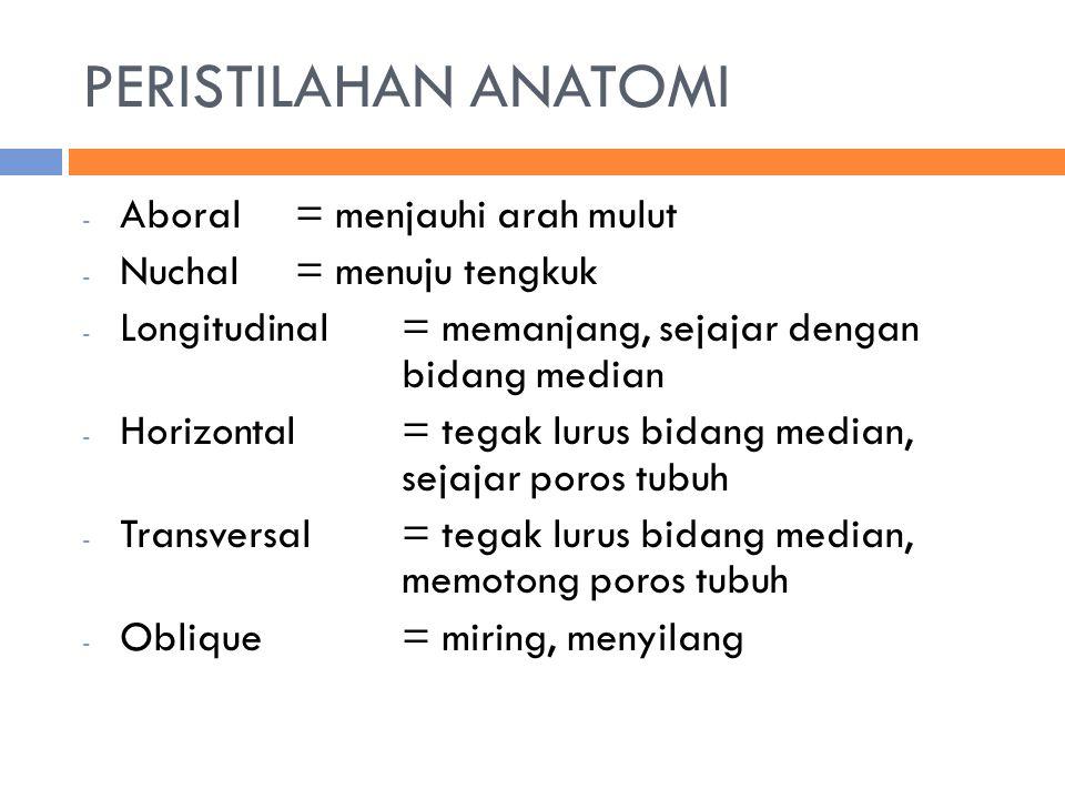 PERISTILAHAN ANATOMI - Aboral = menjauhi arah mulut - Nuchal= menuju tengkuk - Longitudinal= memanjang, sejajar dengan bidang median - Horizontal= tegak lurus bidang median, sejajar poros tubuh - Transversal= tegak lurus bidang median, memotong poros tubuh - Oblique= miring, menyilang