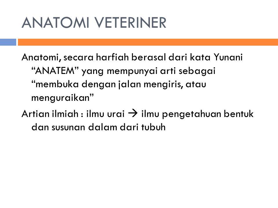 "ANATOMI VETERINER Anatomi, secara harfiah berasal dari kata Yunani ""ANATEM"" yang mempunyai arti sebagai ""membuka dengan jalan mengiris, atau menguraik"