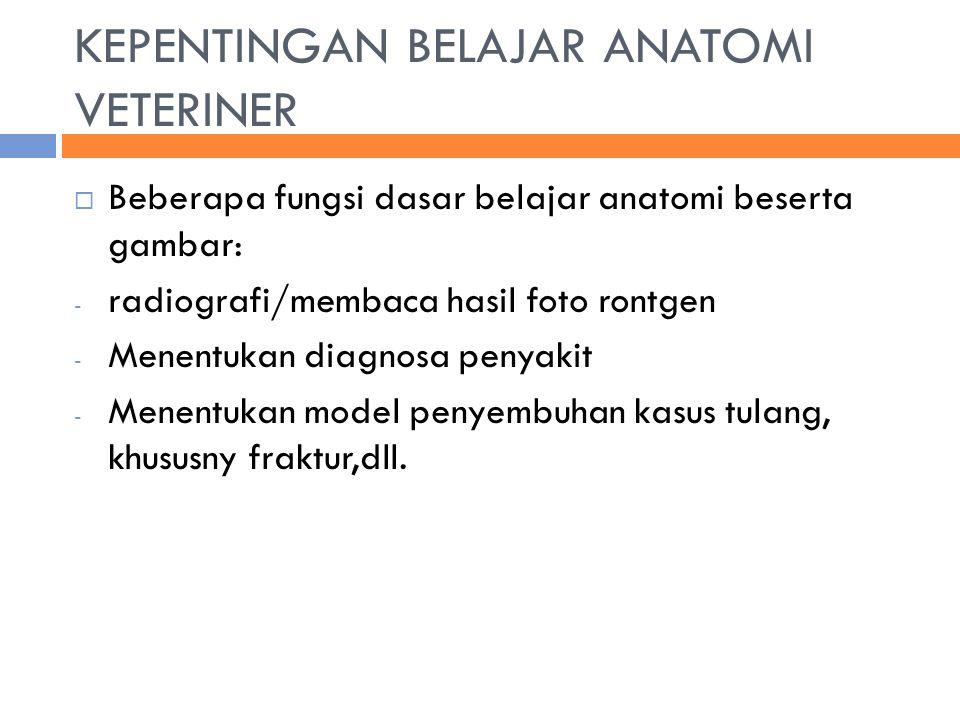 KEPENTINGAN BELAJAR ANATOMI VETERINER  Beberapa fungsi dasar belajar anatomi beserta gambar: - radiografi/membaca hasil foto rontgen - Menentukan diagnosa penyakit - Menentukan model penyembuhan kasus tulang, khususny fraktur,dll.