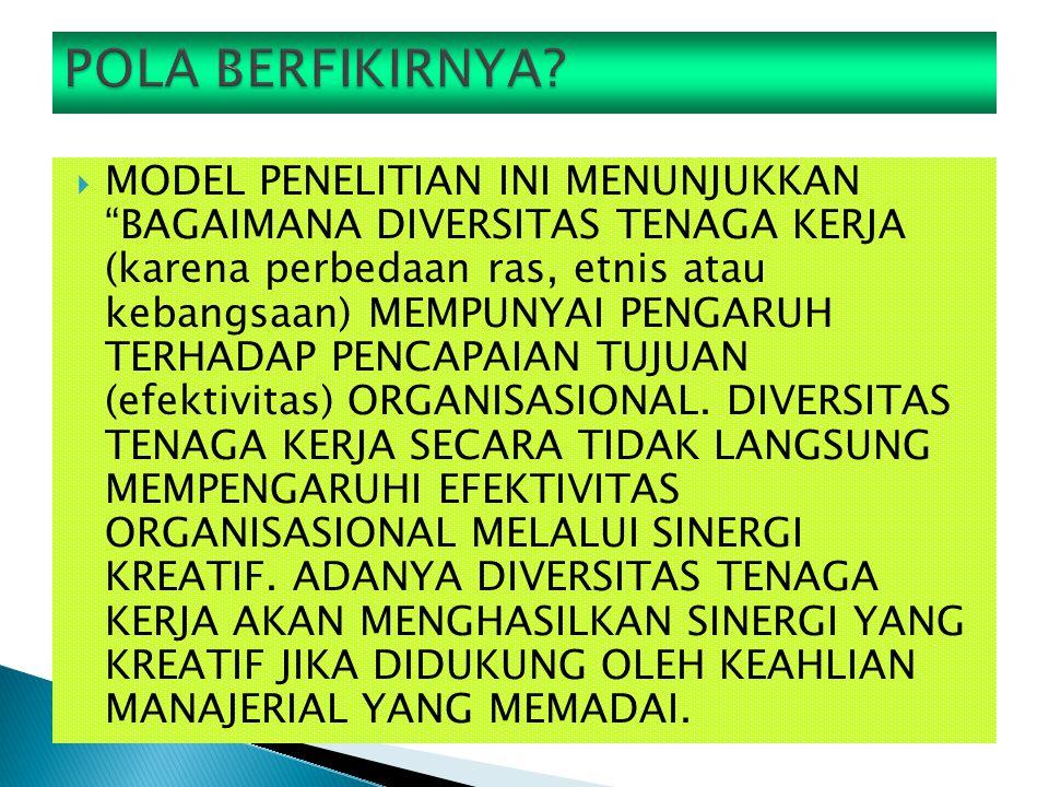  MODEL PENELITIAN INI MENUNJUKKAN BAGAIMANA DIVERSITAS TENAGA KERJA (karena perbedaan ras, etnis atau kebangsaan) MEMPUNYAI PENGARUH TERHADAP PENCAPAIAN TUJUAN (efektivitas) ORGANISASIONAL.
