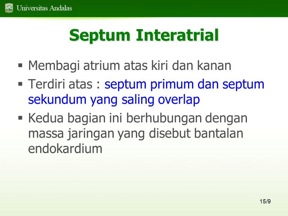 15/9 Septum Interatrial  Membagi atrium atas kiri dan kanan  Terdiri atas : septum primum dan septum sekundum yang saling overlap  Kedua bagian ini