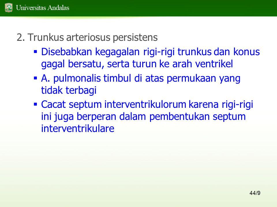 44/9 2.Trunkus arteriosus persistens  Disebabkan kegagalan rigi-rigi trunkus dan konus gagal bersatu, serta turun ke arah ventrikel  A. pulmonalis t