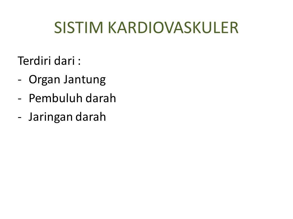 SISTIM KARDIOVASKULER Terdiri dari : -Organ Jantung -Pembuluh darah -Jaringan darah