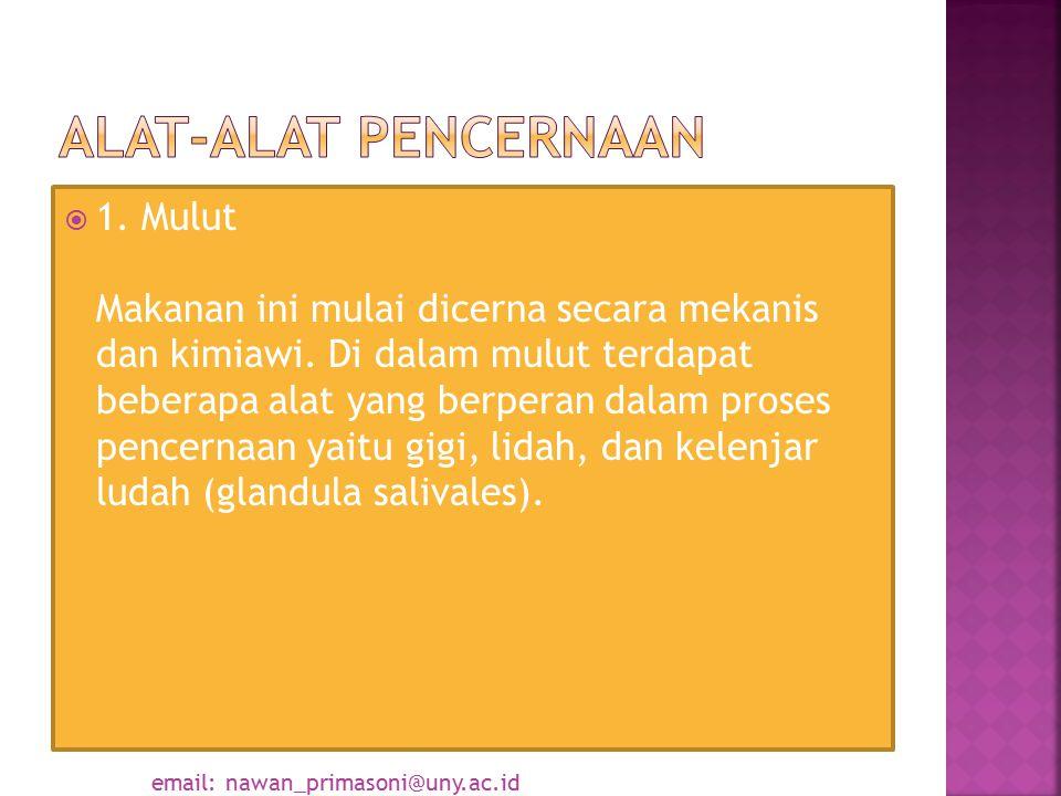  Gigi Taring  Gigi Geraham  Gigi Seri  Gigi Taring  Gigi Geraham  Gigi Seri email: nawan_primasoni@uny.ac.id