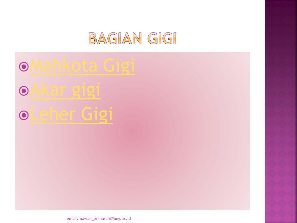  Mahkota Gigi Mahkota Gigi  Akar gigi Akar gigi  Leher Gigi Leher Gigi email: nawan_primasoni@uny.ac.id