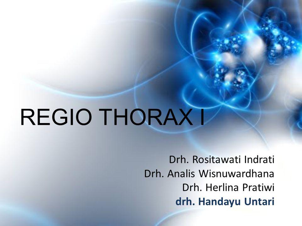 REGIO THORAX I Drh. Rositawati Indrati Drh. Analis Wisnuwardhana Drh. Herlina Pratiwi drh. Handayu Untari