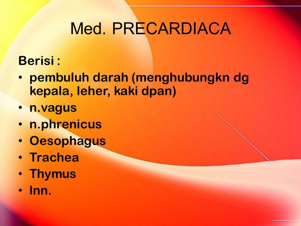 Med. PRECARDIACA Berisi : pembuluh darah (menghubungkn dg kepala, leher, kaki dpan) n.vagus n.phrenicus Oesophagus Trachea Thymus lnn.