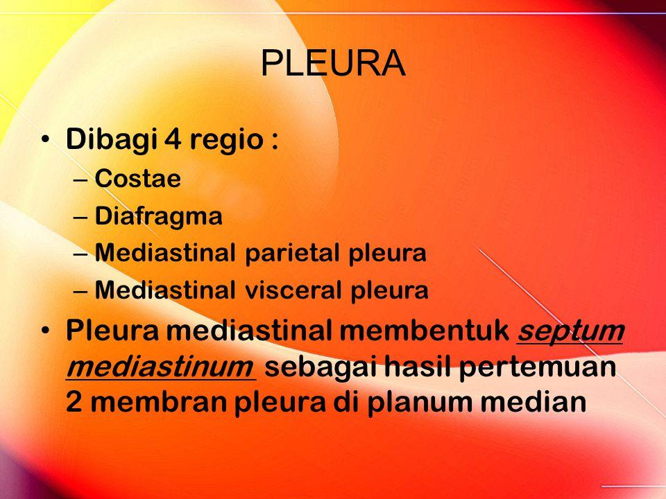 PLEURA Dibagi 4 regio : – Costae – Diafragma – Mediastinal parietal pleura – Mediastinal visceral pleura Pleura mediastinal membentuk septum mediastinum sebagai hasil pertemuan 2 membran pleura di planum median