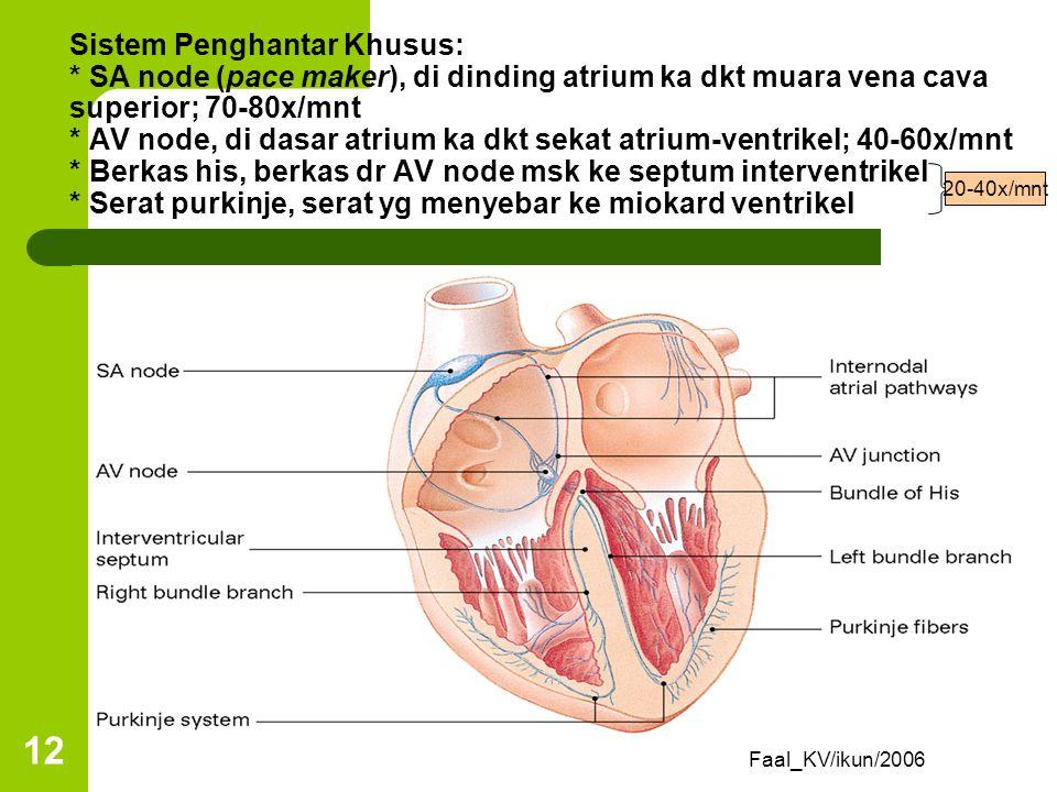 Sistem Konduksi Jantung Jantung memiliki sistem intrinsik, yakni otot jantung scr otomatis terstimulasi utk berkontraksi tanpa stimulus eksternal (aut