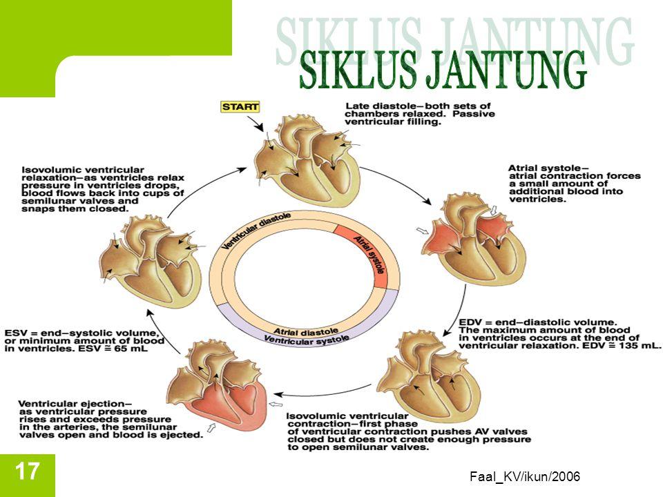 Siklus jantung Fungsi utama : mempertahankan sirkulasi darah. Jantung bekerja sbg pompa dgn serangkaian kejadian (siklus jantung) Siklus jantung/menit