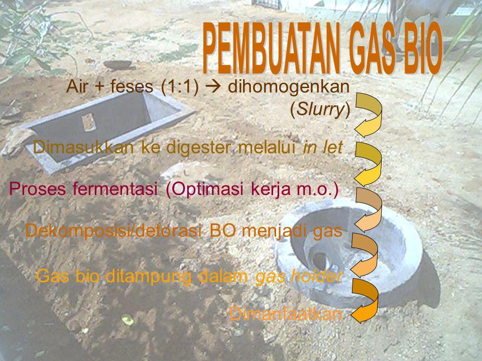 Air + feses (1:1)  dihomogenkan (Slurry) Dimasukkan ke digester melalui in let Proses fermentasi (Optimasi kerja m.o.) Dekomposisi/detorasi BO menjadi gas Gas bio ditampung dalam gas holder Dimanfaatkan