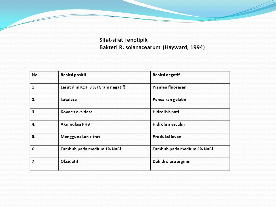 No.Reaksi positifReaksi negatif 1Larut dlm KOH 3 % (Gram negatif)Pigmen fluoresen 2.katalasePencairan gelatin 3.Kovac's oksidaseHidrolisis pati 4.Akumulasi PHBHidrolisis esculin 5.Menggunakan sitratProduksi levan 6.Tumbuh pada medium 1% NaClTumbuh pada medium 2% NaCl 7OksidatifDehidrolase arginin Sifat-sifat fenotipik Bakteri R.