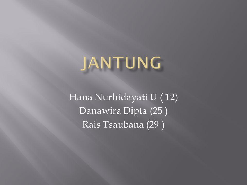 Hana Nurhidayati U ( 12) Danawira Dipta (25 ) Rais Tsaubana (29 )