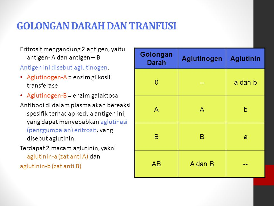 GOLONGAN DARAH DAN TRANFUSI Eritrosit mengandung 2 antigen, yaitu antigen- A dan antigen – B Antigen ini disebut aglutinogen. Aglutinogen-A = enzim gl