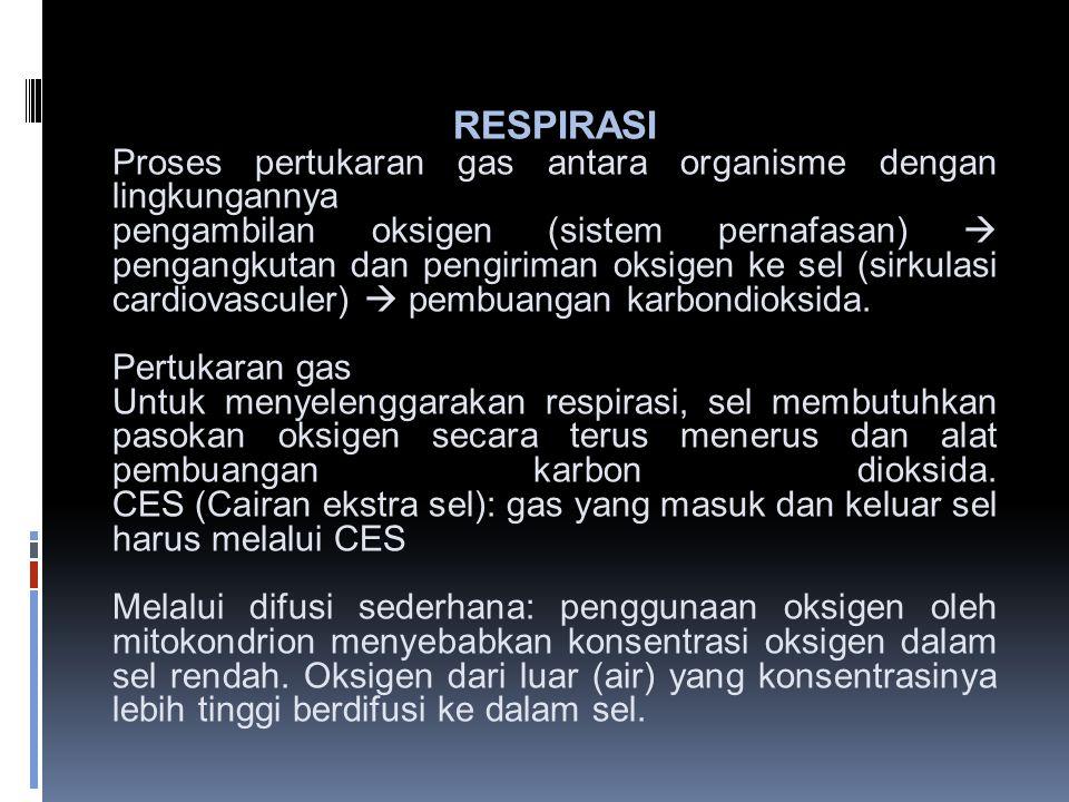 RESPIRASI Proses pertukaran gas antara organisme dengan lingkungannya pengambilan oksigen (sistem pernafasan)  pengangkutan dan pengiriman oksigen ke sel (sirkulasi cardiovasculer)  pembuangan karbondioksida.