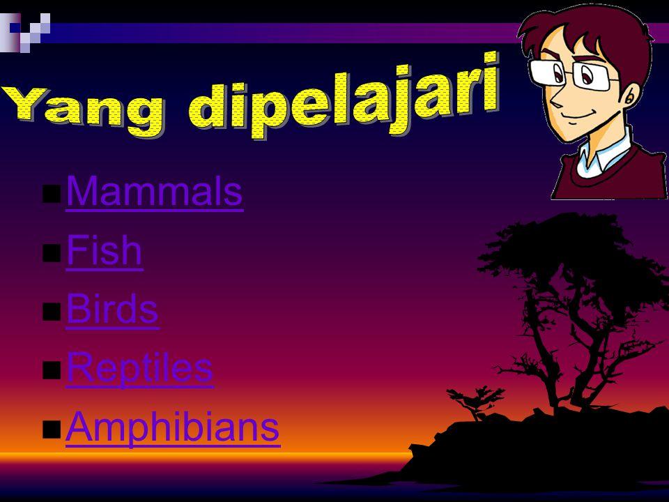Mammals Fish Birds Reptiles Amphibians