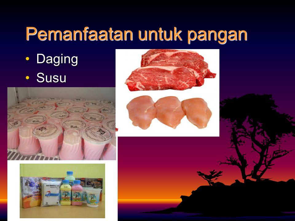 Pemanfaatan untuk pangan DagingDaging SusuSusu