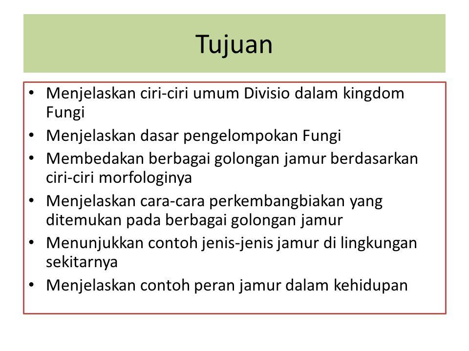 Tujuan Menjelaskan ciri-ciri umum Divisio dalam kingdom Fungi Menjelaskan dasar pengelompokan Fungi Membedakan berbagai golongan jamur berdasarkan cir