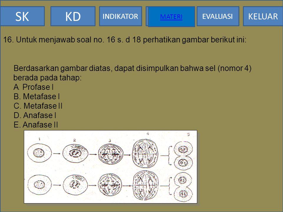 SKKD INDIKATOR MATERI EVALUASI KELUAR MATERI 15. Sedangkan bila menunjukkan ciri: kromosom homolog saling berpisah, kromatid masih berlekatan pada sen