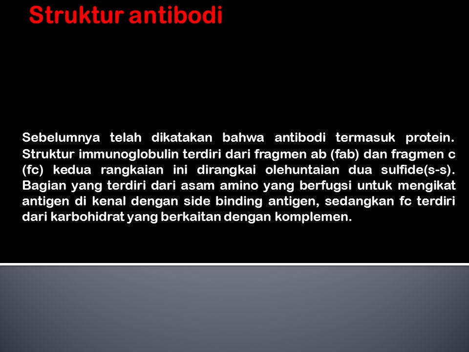 Sebelumnya telah dikatakan bahwa antibodi termasuk protein.