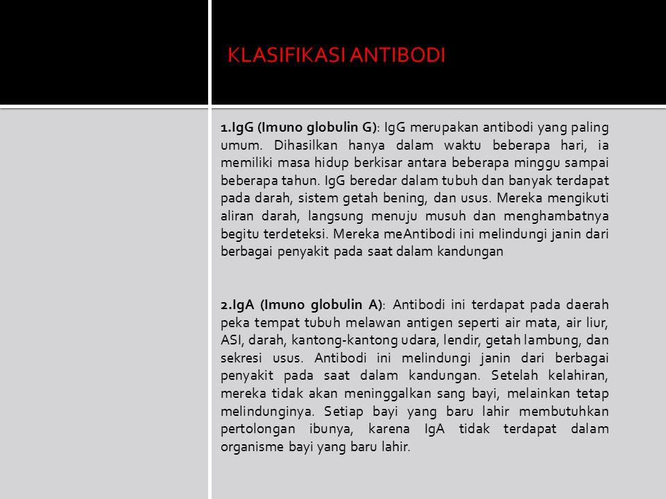 KLASIFIKASI ANTIBODI 1.IgG (Imuno globulin G): IgG merupakan antibodi yang paling umum. Dihasilkan hanya dalam waktu beberapa hari, ia memiliki masa h