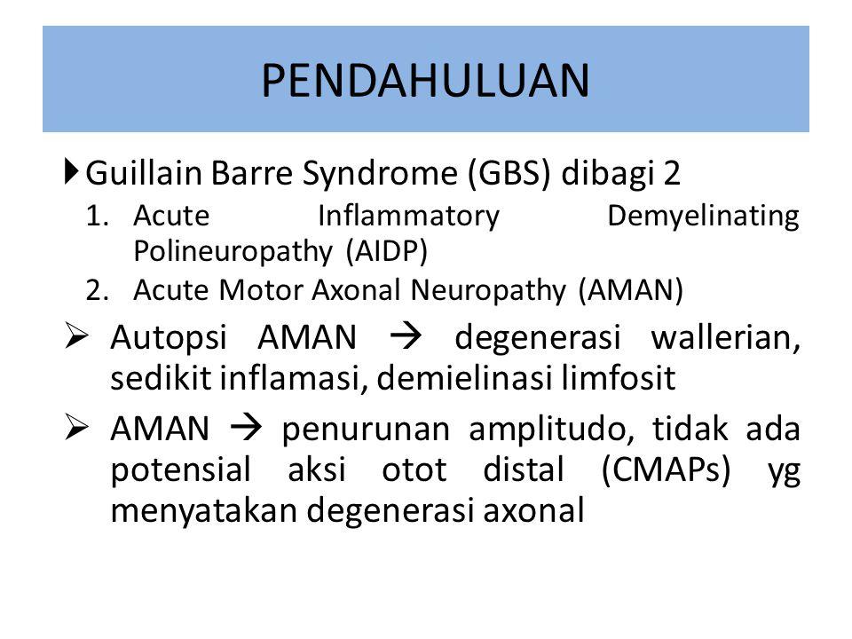 PENDAHULUAN  Guillain Barre Syndrome (GBS) dibagi 2 1.Acute Inflammatory Demyelinating Polineuropathy (AIDP) 2.Acute Motor Axonal Neuropathy (AMAN)  Autopsi AMAN  degenerasi wallerian, sedikit inflamasi, demielinasi limfosit  AMAN  penurunan amplitudo, tidak ada potensial aksi otot distal (CMAPs) yg menyatakan degenerasi axonal