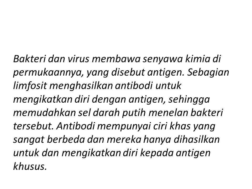 Bakteri dan virus membawa senyawa kimia di permukaannya, yang disebut antigen.