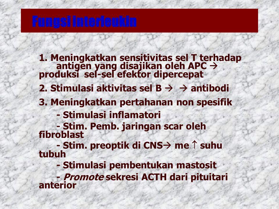 16 Fungsi interleukin 1.