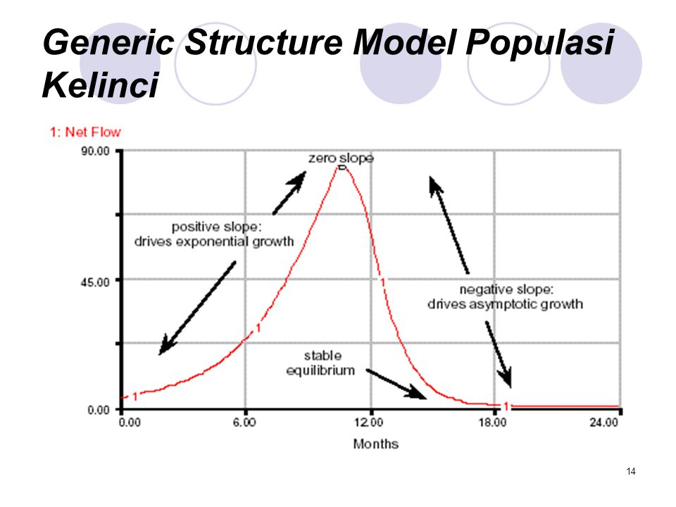 14 Generic Structure Model Populasi Kelinci