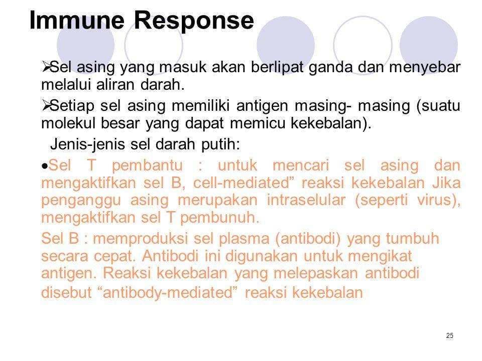 25 Immune Response  Sel asing yang masuk akan berlipat ganda dan menyebar melalui aliran darah.  Setiap sel asing memiliki antigen masing- masing (s