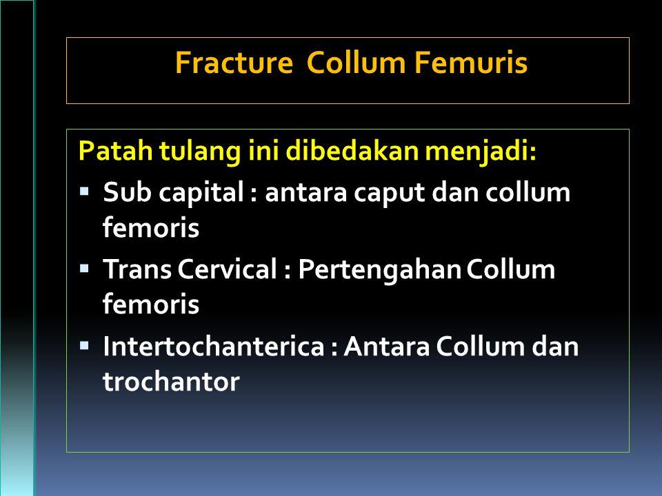 Patah tulang ini dibedakan menjadi:  Sub capital : antara caput dan collum femoris  Trans Cervical : Pertengahan Collum femoris  Intertochanterica : Antara Collum dan trochantor Fracture Collum Femuris