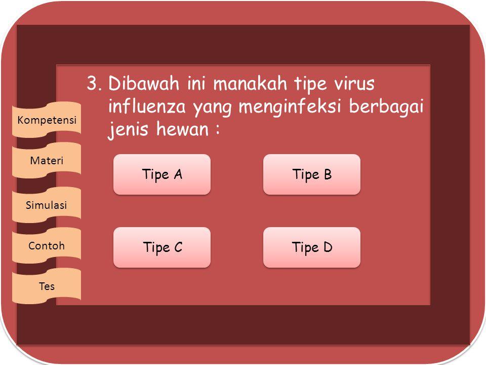 2. Orang yang menderita AIDS mudah terserang penyakit lain sebab : Virus HIV membantu penyakit lain Virus HIV membantu penyakit lain Aktifitas antibod