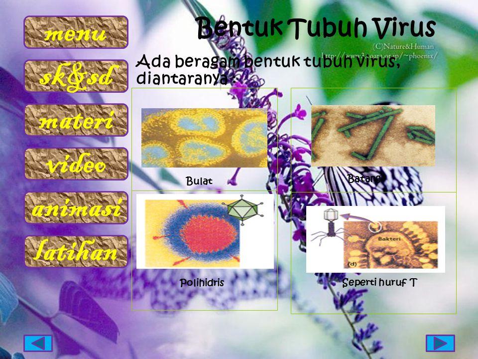 menu sk&sd materi video animasi latihan Ada beragam bentuk tubuh virus, diantaranya : Bulat Polihidris Batang Seperti huruf T