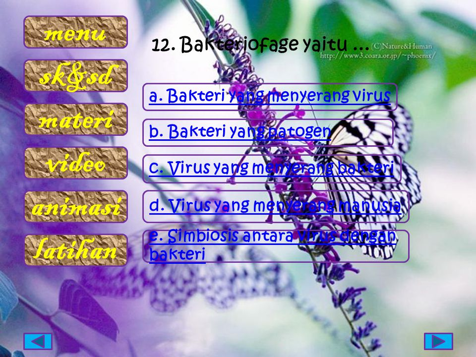 menu sk&sd materi video animasi latihan 12. Bakteriofage yaitu... a. Bakteri yang menyerang virus b. Bakteri yang patogen c. Virus yang menyerang bakt
