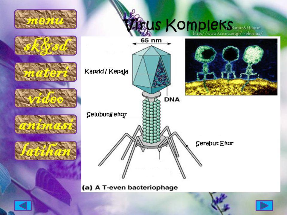 menu sk&sd materi video animasi latihan Virus Kompleks Kapsid / Kepala Selubung ekor Serabut Ekor