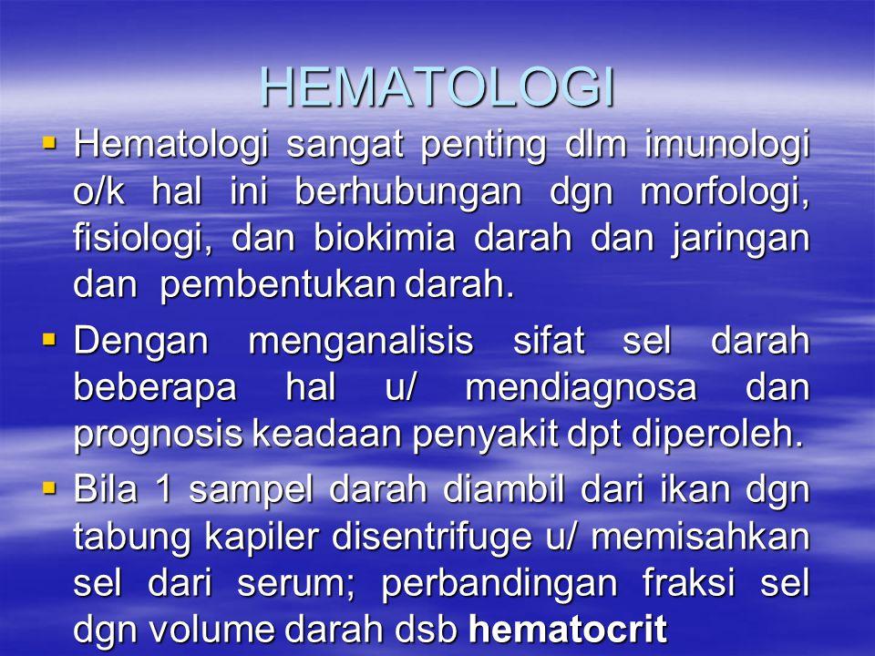 HEMATOLOGI  Hematologi sangat penting dlm imunologi o/k hal ini berhubungan dgn morfologi, fisiologi, dan biokimia darah dan jaringan dan pembentukan