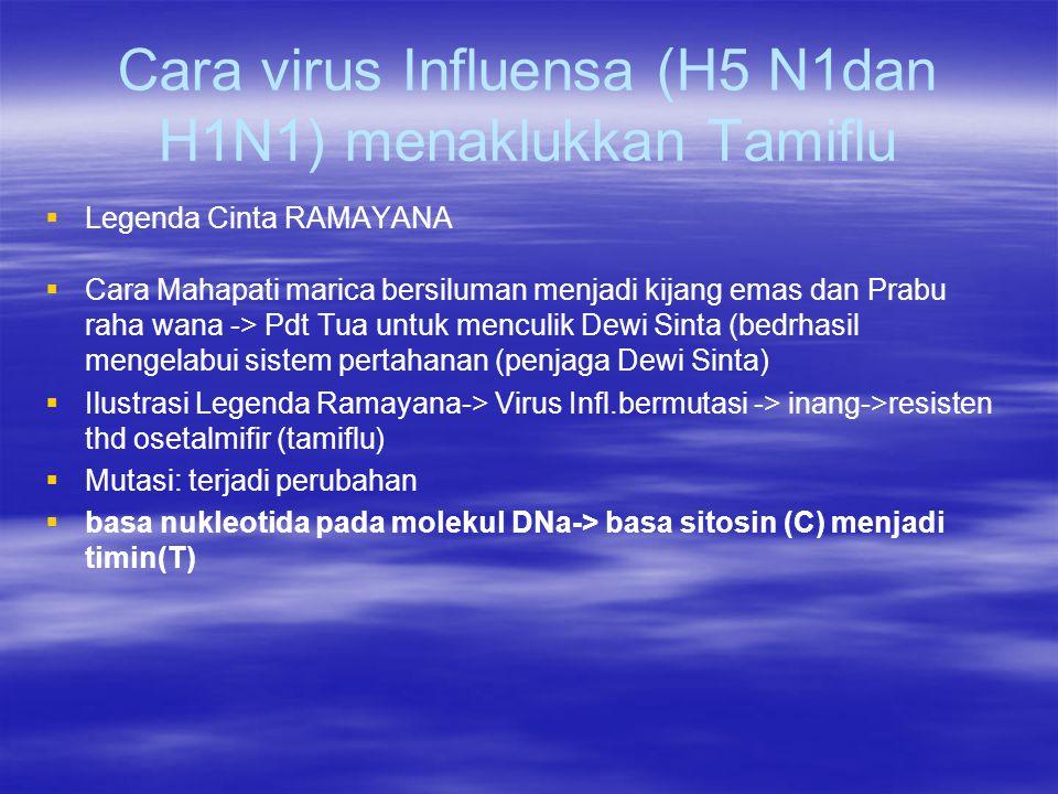 Cara virus Influensa (H5 N1dan H1N1) menaklukkan Tamiflu   Legenda Cinta RAMAYANA   Cara Mahapati marica bersiluman menjadi kijang emas dan Prabu