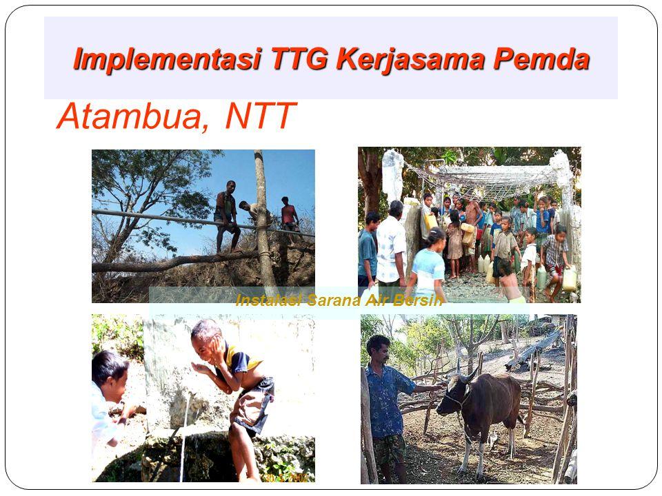 Implementasi TTG Kerjasama Pemda Alor NTT Potensi PLTM - Mikrohidro Program Sarana Air Bersih, NTT Produk Kemiri, Alor NTT