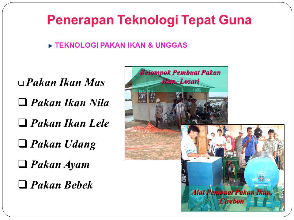 PRODUK HASIL B2P TTG PRODUK OLAHAN PANGAN Kerupuk Ikan / Udang