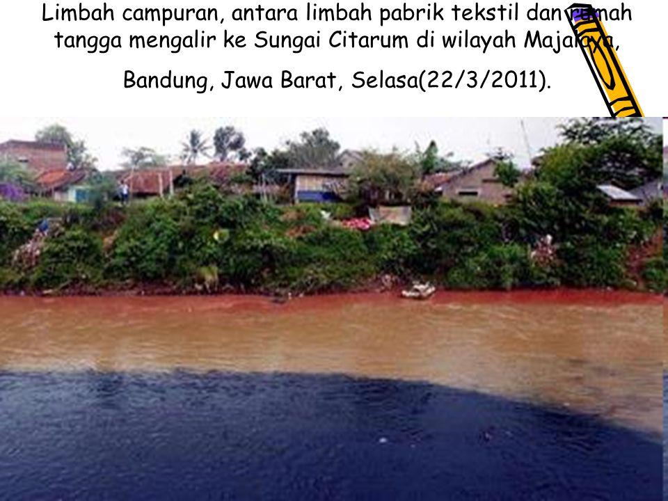 16 Limbah campuran, antara limbah pabrik tekstil dan rumah tangga mengalir ke Sungai Citarum di wilayah Majalaya, Bandung, Jawa Barat, Selasa(22/3/2011).