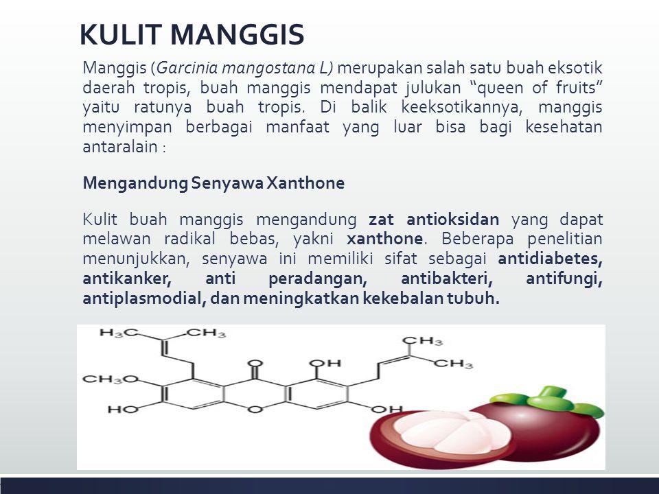 Menghambat Penuaan (Anti Aging) Menurut penelitian lain, zat antioksidan alami yang terkandung dalam buah manggis juga bisa menghambat proses penuaan pada tubuh.