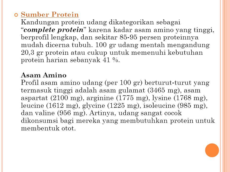 """Sumber Protein Sumber Protein Kandungan protein udang dikategorikan sebagai """" complete protein """" karena kadar asam amino yang tinggi, berprofil lengka"""