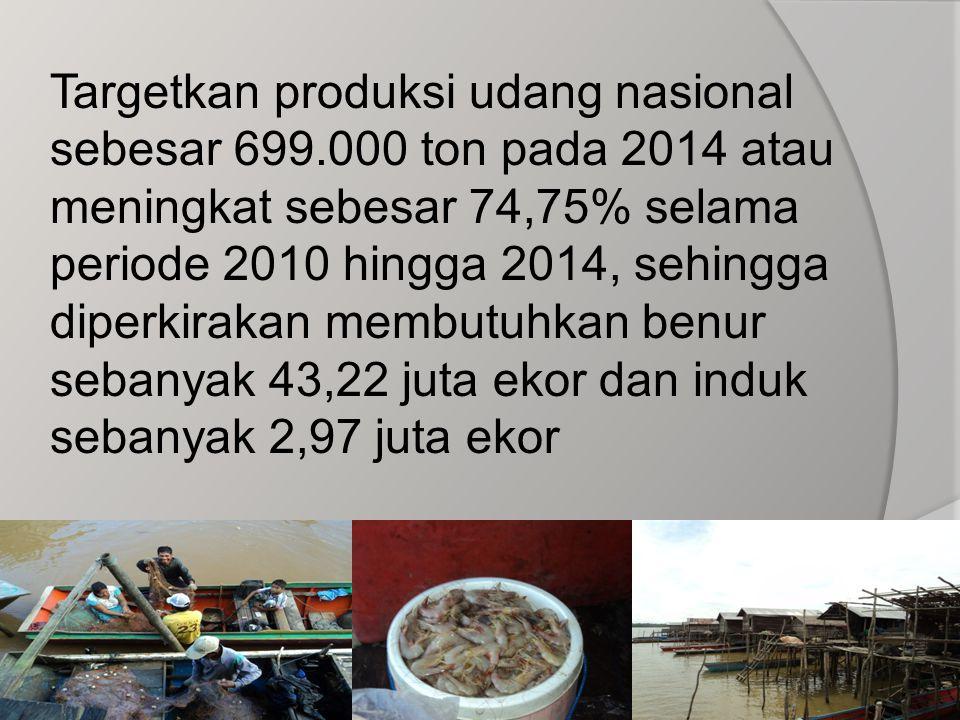 Targetkan produksi udang nasional sebesar 699.000 ton pada 2014 atau meningkat sebesar 74,75% selama periode 2010 hingga 2014, sehingga diperkirakan m