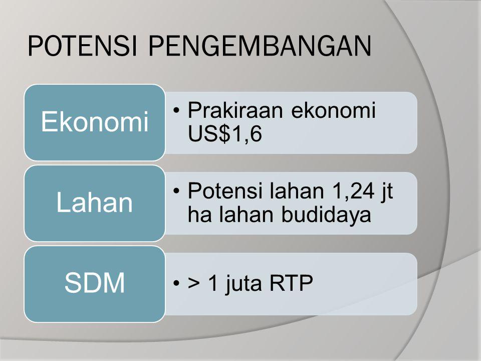 POTENSI PENGEMBANGAN Prakiraan ekonomi US$1,6 Ekonomi Potensi lahan 1,24 jt ha lahan budidaya Lahan > 1 juta RTP SDM