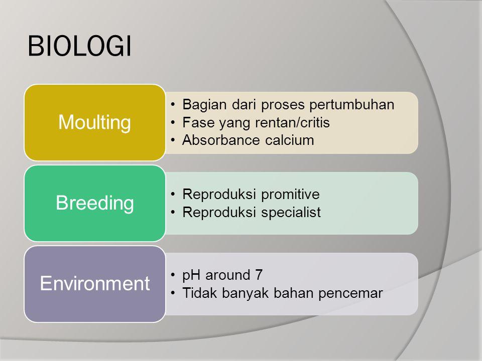 BIOLOGI Bagian dari proses pertumbuhan Fase yang rentan/critis Absorbance calcium Moulting Reproduksi promitive Reproduksi specialist Breeding pH arou