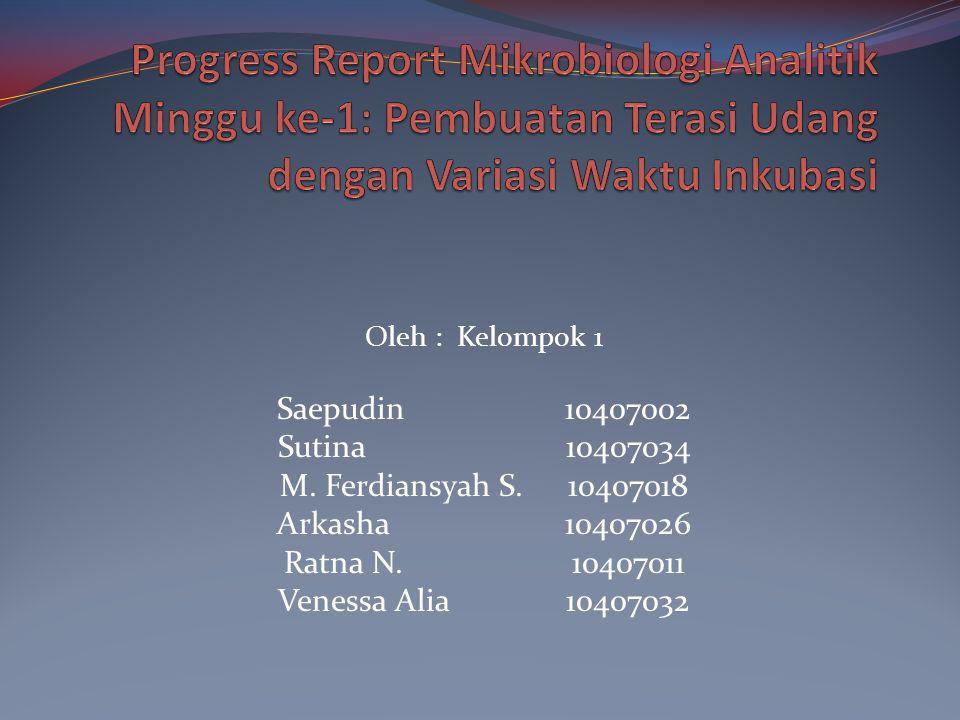 Oleh : Kelompok 1 Saepudin 10407002 Sutina10407034 M.