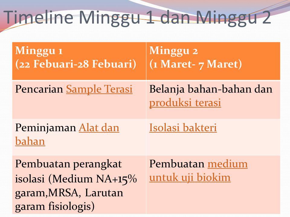 Timeline Minggu 1 dan Minggu 2 Minggu 1 (22 Febuari-28 Febuari) Minggu 2 (1 Maret- 7 Maret) Pencarian Sample TerasiSample TerasiBelanja bahan-bahan dan produksi terasi produksi terasi Peminjaman Alat dan bahanAlat dan bahan Isolasi bakteri Pembuatan perangkat isolasi (Medium NA+ 15 % garam,MRSA, Larutan garam fisiologis) Pembuatan medium untuk uji biokimmedium untuk uji biokim